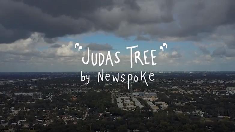 Judas Tree. The Video.